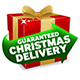 Guaranteed Delivery for Christmas